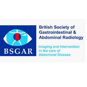 BSGAR logo