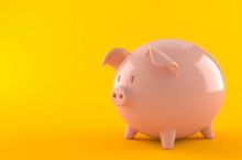 Photo of a piggy bank on a yellow background