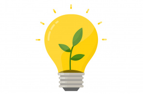 Illustration of a lightbub with a plant growing inside it